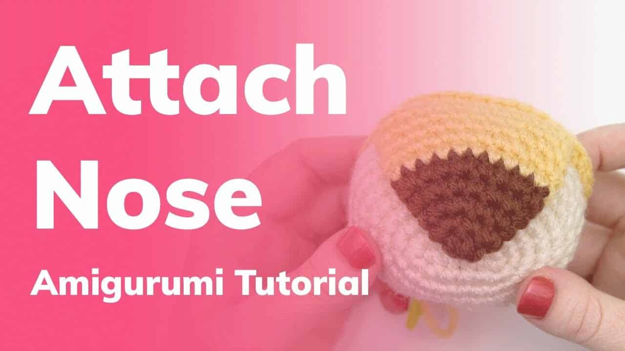 Crochet Nose to Snout